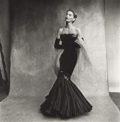 rochas_mermaid_dress__lisa_fonssagrives_penn__jpg_4851_jpeg_714.jpeg_north_499x_white