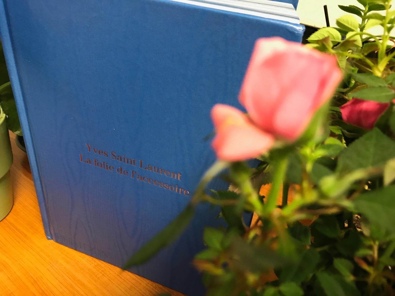 Beau Livre Yves Saint Laurent La Folie De L Accessoire
